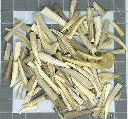 1 Pound Real Deer Antler Horn Bone Jewelry Making Lot Charms