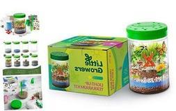 Momila Light-up Terrarium Kit for Kids, Gifts for 5 6 7 Year